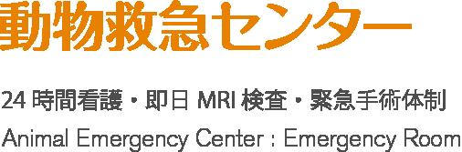 ER動物救急センター