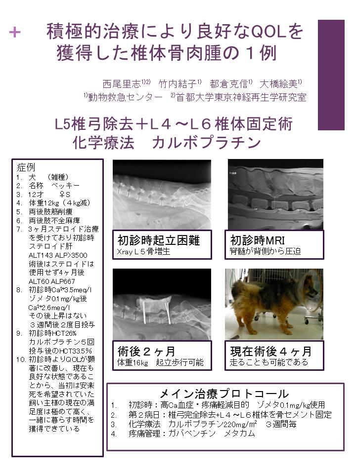 資料集:積極的治療により良好なQOLを獲得した椎体骨肉腫