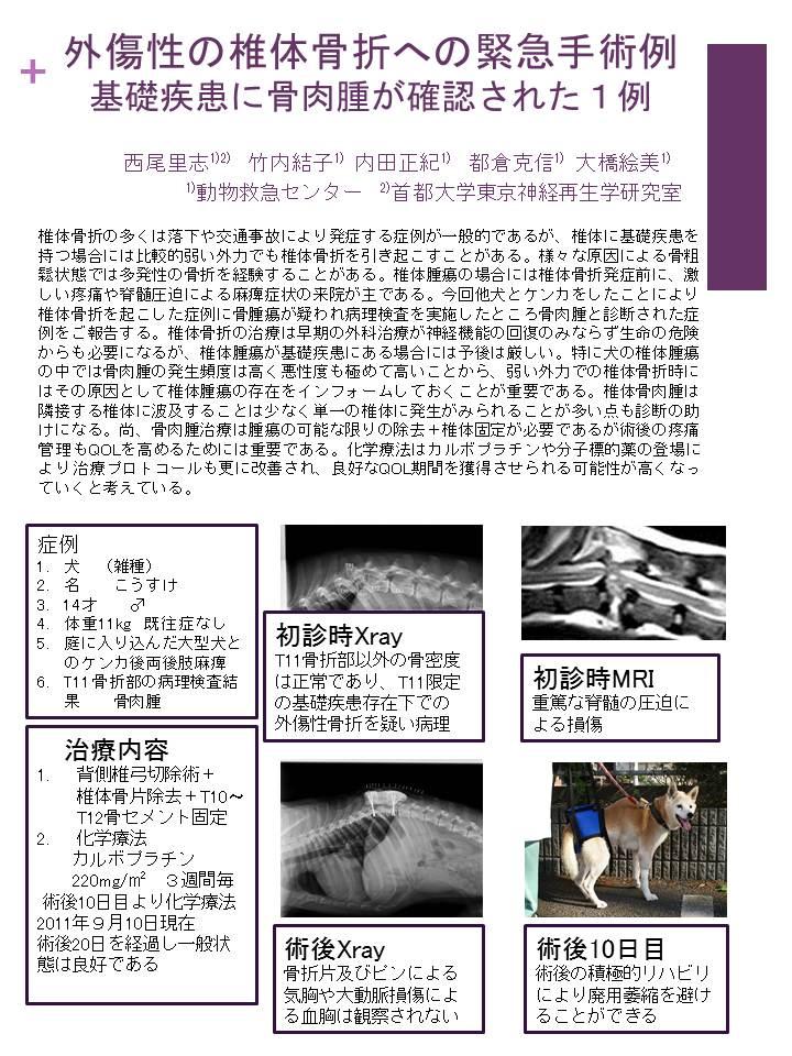 資料集:外傷性の椎体骨折への緊急手術例